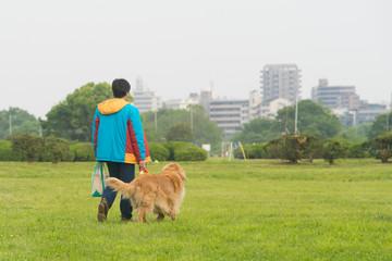 犬の散歩(ゴールデンレトリバー)