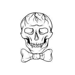 Hand drawn skull sketch