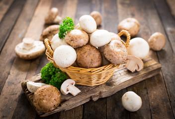 Image result for champignon mushroom
