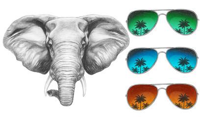 Portrait of Elephant with mirror sunglasses. Hand drawn illustration.