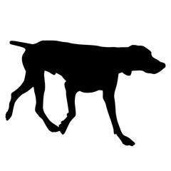 pointer dog black silhouette