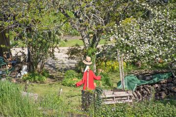 épouvantail pittoresque dans un jardin