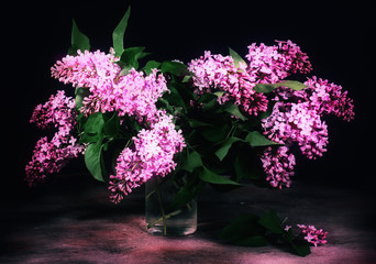 Still life lilac on dark background.