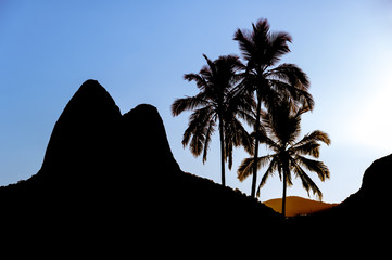 Wall Mural - Sunset in Ipanema Beach with Palm Trees and Two Brothers Mountains