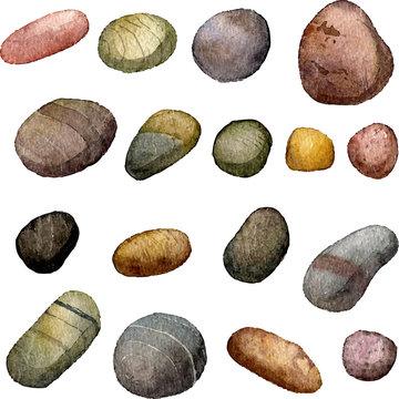 vector sea stones drawing in watercolor