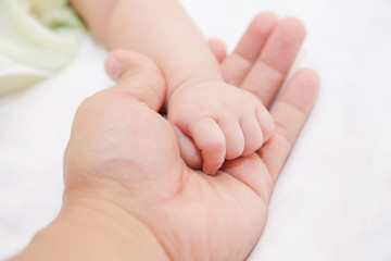 hands of father holding baby hand