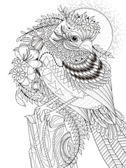 beautiful sparrow adult coloring page
