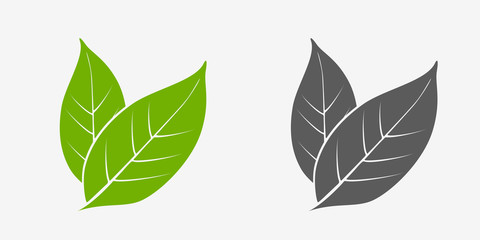 Tea leaves icon set. Green and gray. Isolated leaves on white background