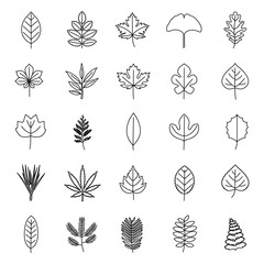 Leaves outlines vector icons