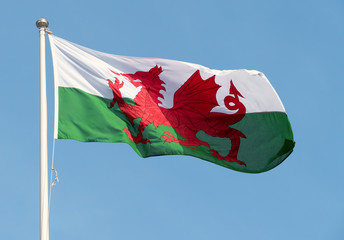Welsh flag blowing in the wind.