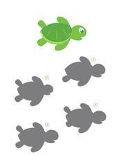 gioco delle ombre, tartaruga