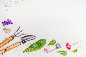 Garden tools and parts of plants and flowers on light background, top view, place for text, border