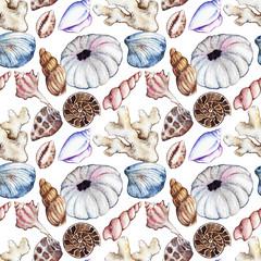 Watercolor sea ocean seashell clam coral ammonit urchin seamless pattern