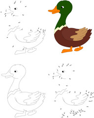 Cartoon duck. Coloring book and dot to dot game for kids