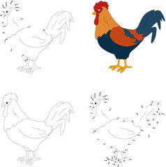 Cartoon colorful cock. Coloring book and dot to dot game for kid