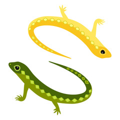 Decorative funny yellow and green lizard on a white background.