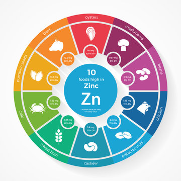 10 foods high in Zinc. Nutrition infographics. Healthy lifestyle and diet vector illustration with food icons.
