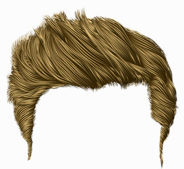 trendy stylish man hairs  fringe  . beauty style . high hair styling . realistic  3d .