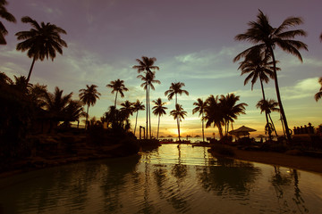 Swimming pool with palm trees at twilight.