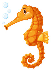 Seahorse in orange color