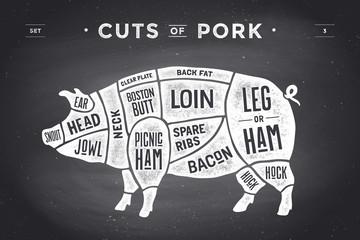 Cut of meat set. Poster Butcher diagram, scheme and guide - Pork. Vintage typographic hand-drawn on a black chalkboard background. Vector illustration