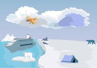 Arctoc and antarctic north pole life vector illustration
