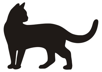 black cat, vector icon, silhouette