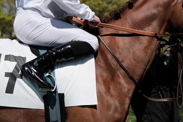 course chevaux cheval casaque quinté tiercé hippique champ de