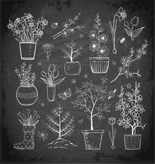 Doodle sketch garden flowers on blackboard background.