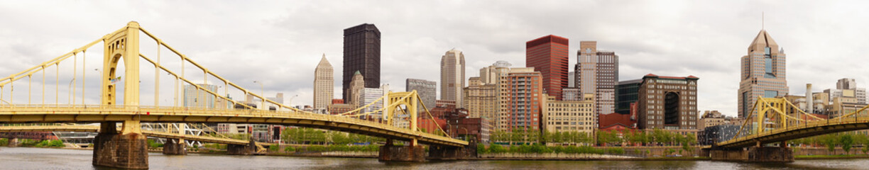 Pittsburgh Pennsylvania Downtown City Skyline Allegeny River