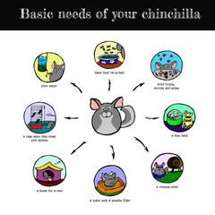 Chinchilla's needs scheme