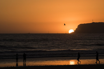 Sunset with sun on horizon on Coronado island with silhouettes of people and flying pelican in San Diego, California