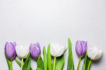 Purple and white tulips on a pearl color tile with copy space