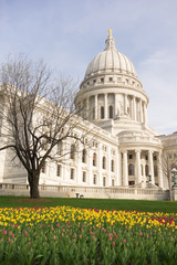 Wisconsin Capital Building Landscaped Grounds Tulip Flowers