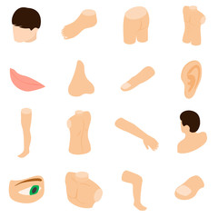 Body parts icons set, isometric 3d style