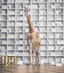 giraffe in the room