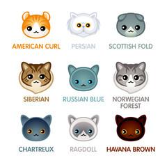 Cute cat icons, set II