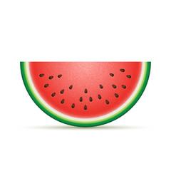 Vector watermelon Illustration