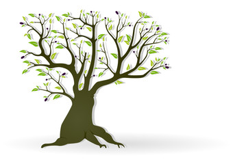 Olive Tree Illustration - Abstract Colored Vector