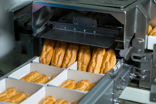 Boxes with pastry on conveyor. Device putting eclairs into boxes. Automated production of sweet food. High sugar content food.