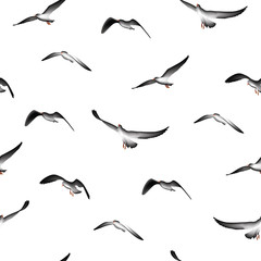 flying birds seamless pattern,  illustration isolated on white background.
