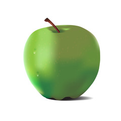 Detailed big shiny green apple