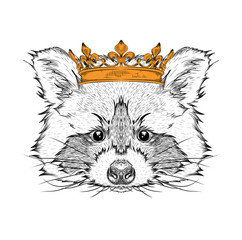 Photo sur Aluminium Croquis dessinés à la main des animaux Hand draw Image Portrait raccoon in the crown. Use for print, posters, t-shirts. Hand draw vector illustration