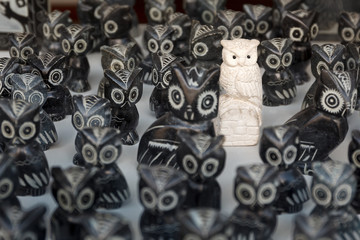 One different owl in crowd