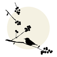 Birds on the branch - vector elements
