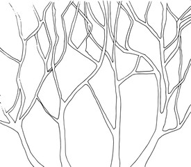 Abstract trees branch line art illustration in black and white tone.