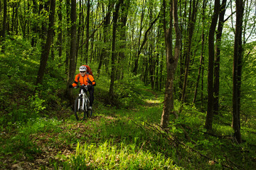 Cyclist Riding the Bike in Beautiful Spring Forest