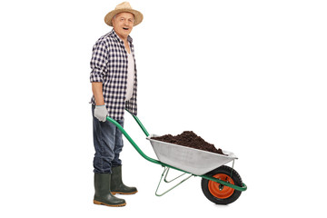 Worker pushing a wheelbarrow full of dirt