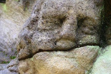 Detail of the stone head - detail