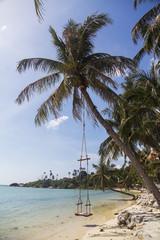 Swing in Ko Pha Ngan in Thailand